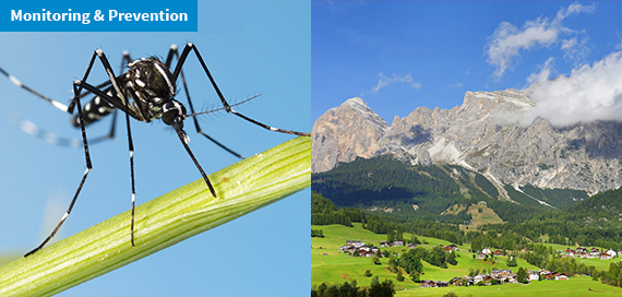 Zika Virus: the risk of spreading is low in the Alpine areas of Italy