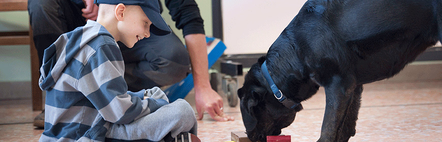 National reference laboratory for animal assisted intervention (pet therapy)