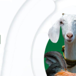 LIDISKI project: a cooperation and development approach to livestock diseases control in Nigeria