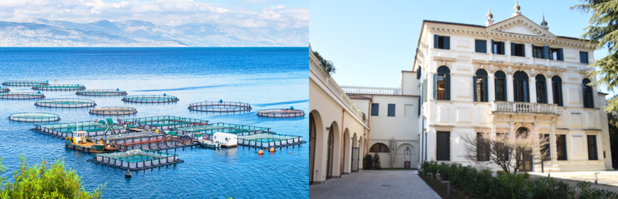 AdriAquaNet training course on health management and sustainability of fish farms, 19 November 2021 in Padua (Italy)